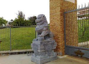 Mẫu sư tử đá đẹp