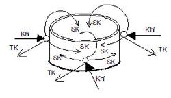 phong thủy mộ tròn